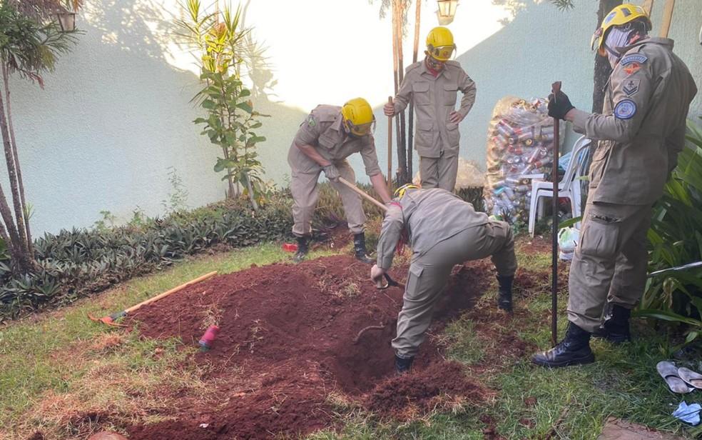 corpo enterrado no quintal - Esposa mata o marido, enterra o corpo no quintal, é presa mas acaba solta após alegar legitima defesa