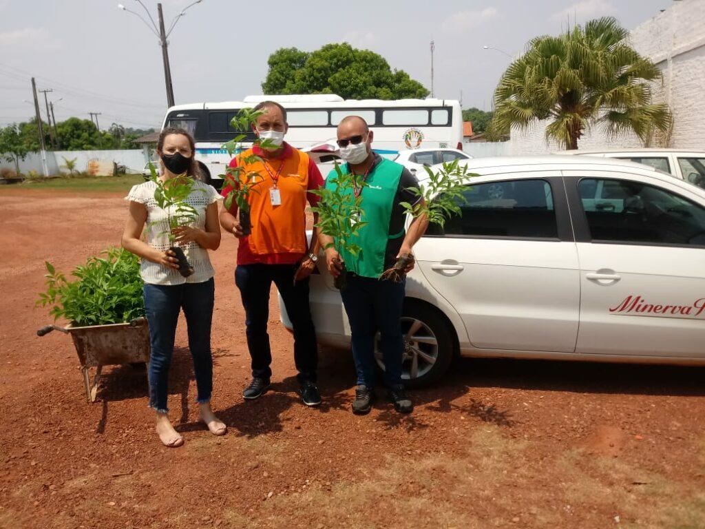 Distribuição e Plantio de Mudas marca o dia da Árvore em Rolim de Moura 58